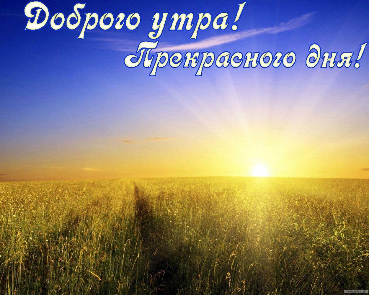 задел скальпелем картинка доброе утро долина бог