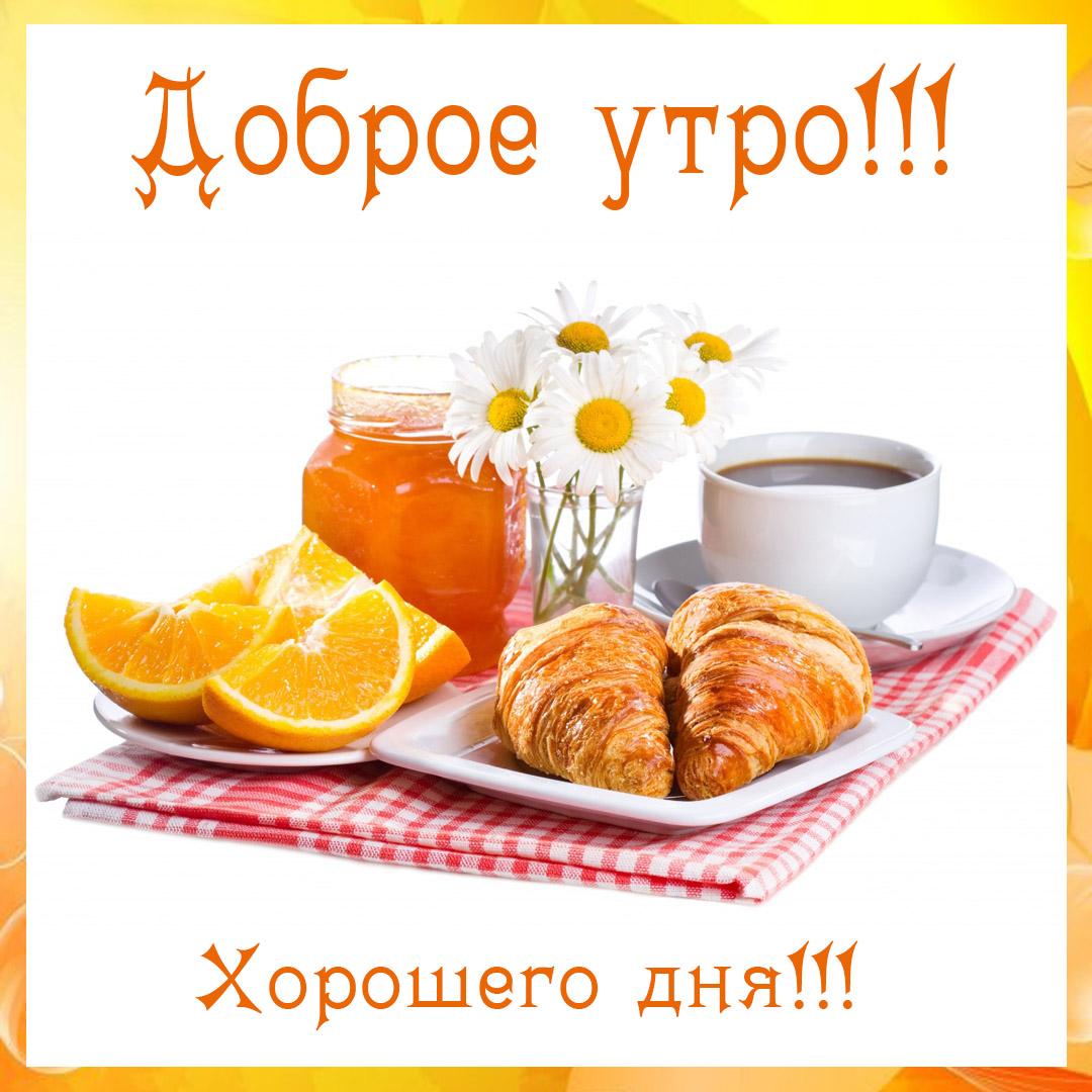 Большие картинки открытки доброе утро, картинки