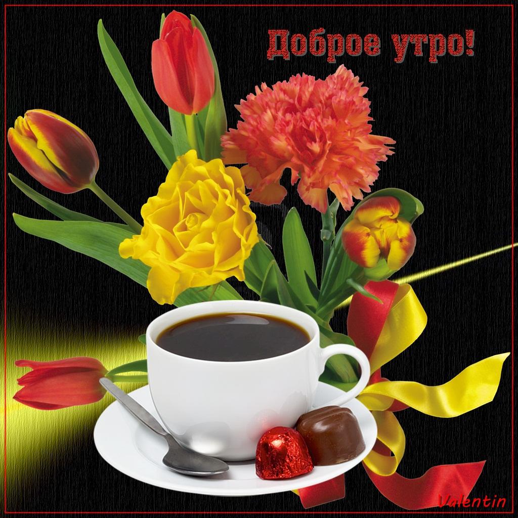 Февраля, открытки и фотографии пожелания доброго утра ночи и дня
