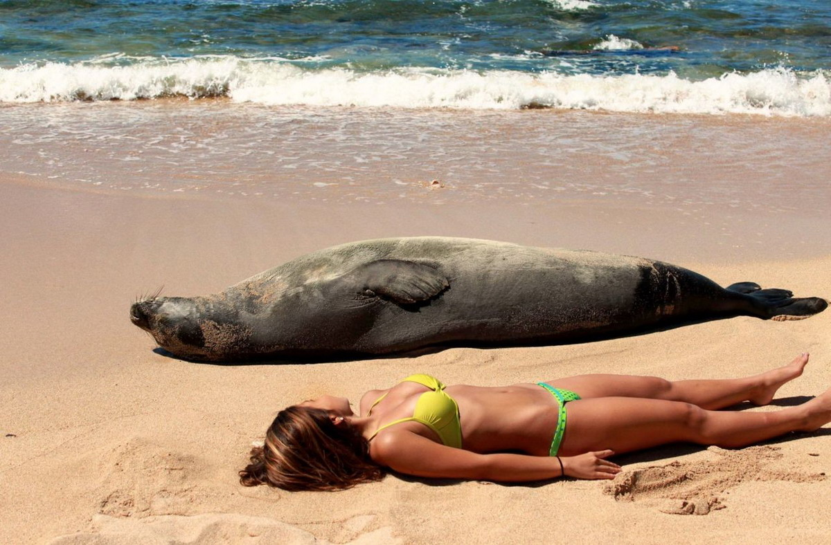 самые смешные фото с пляжа пенсионеров так