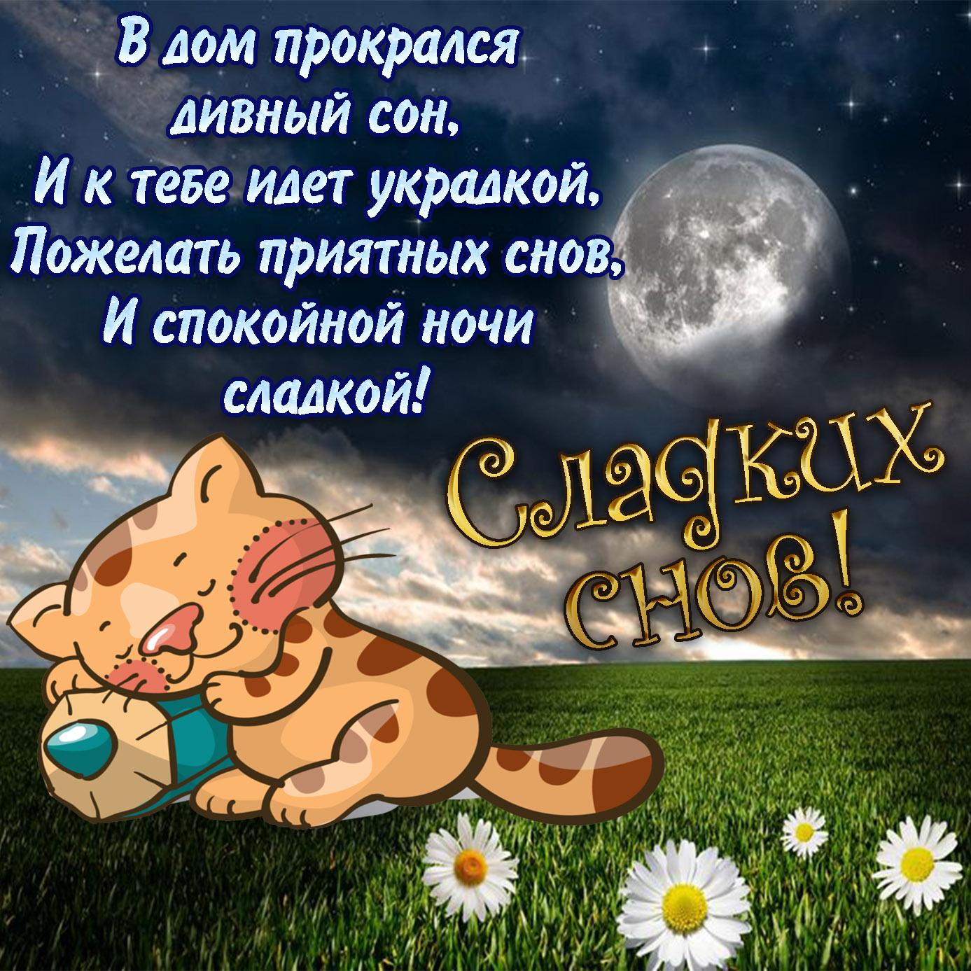 Пожелания на ночь подруге которую я хочу
