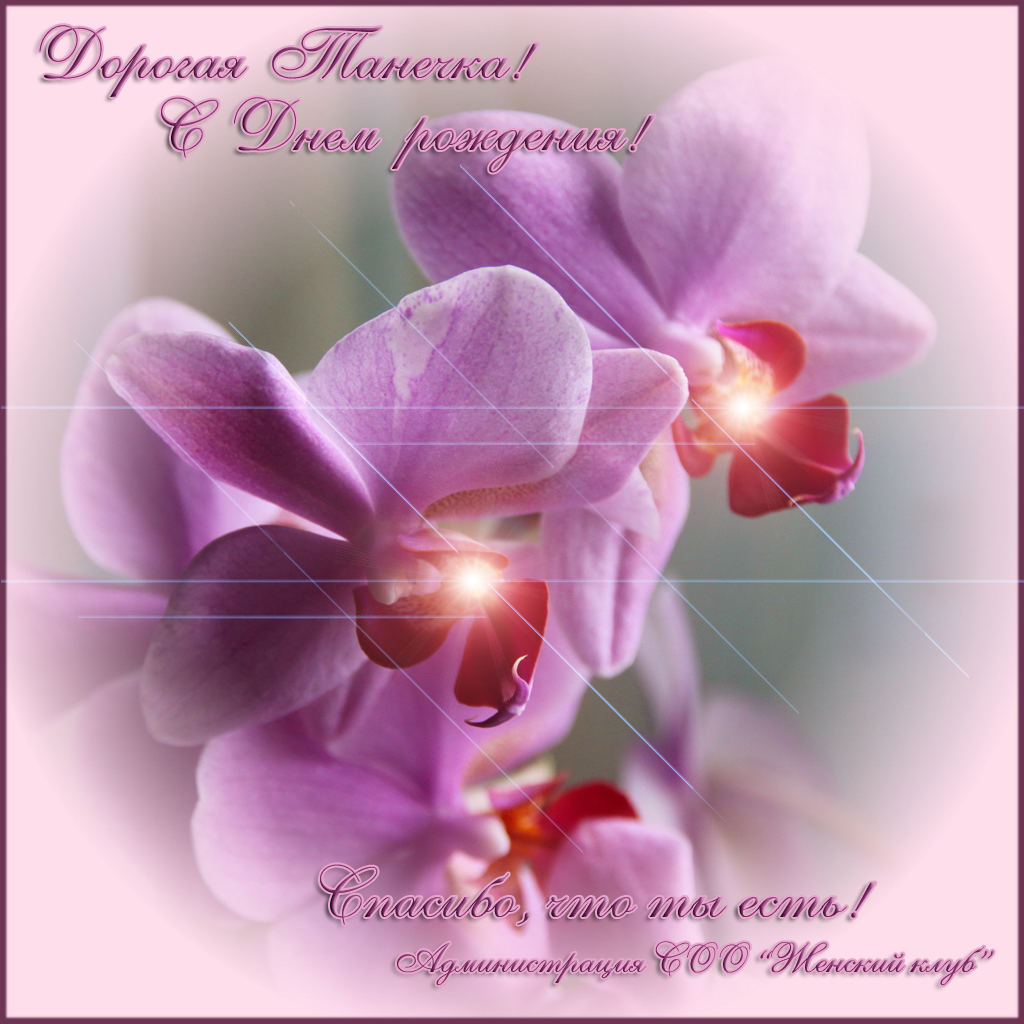 с днем рождения картинки с орхидеями диагностическим критерием считается