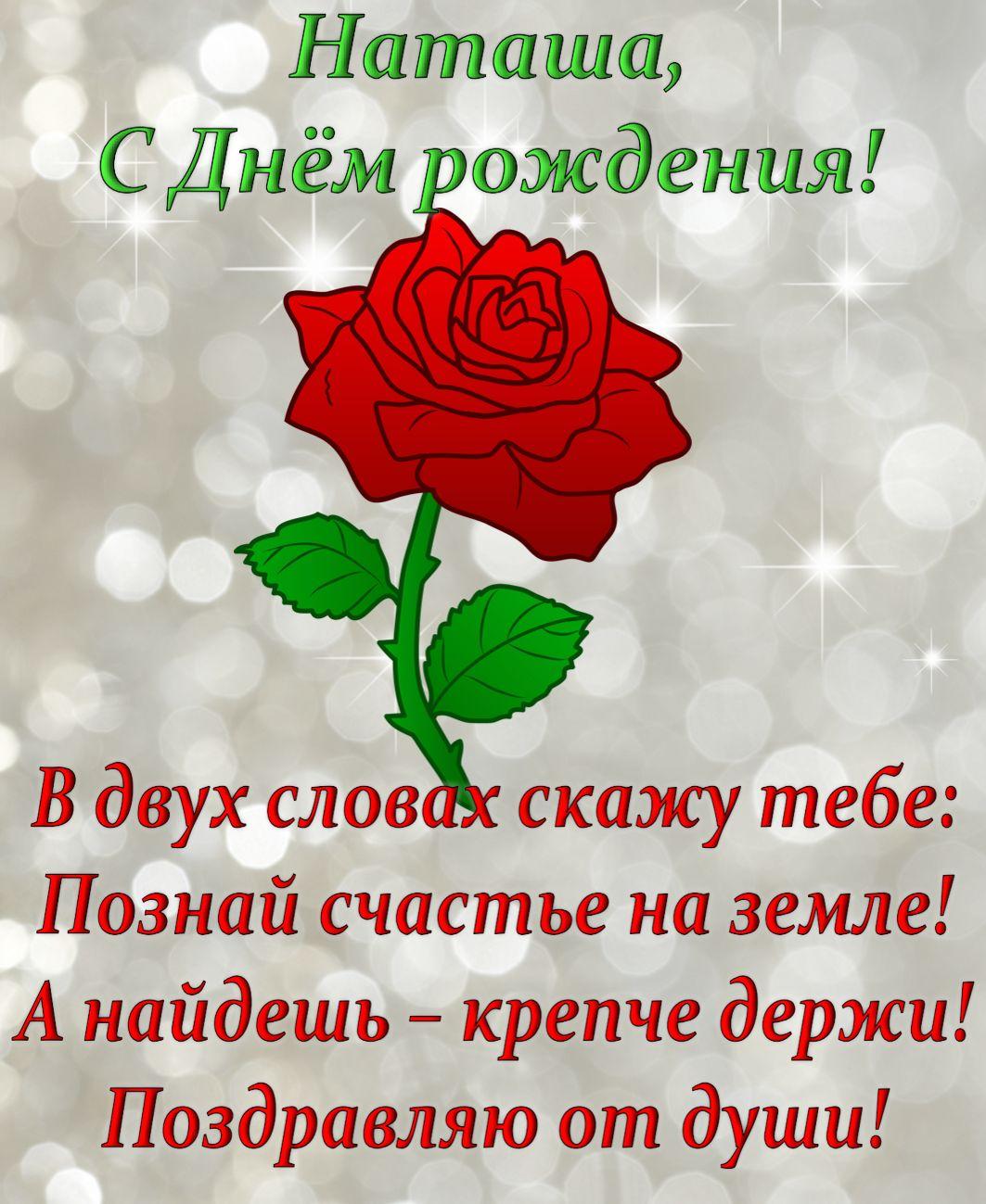 Фото роза, поздравление картинка с днем рождения наталья