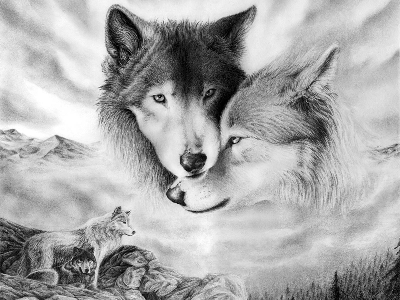 Картинки белого волка на снегу материал