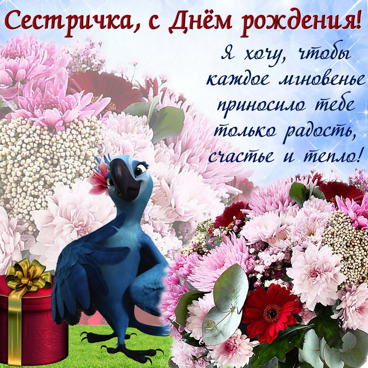 Поздравления для сестры с днем рождения с картинками, днем рождения открытки