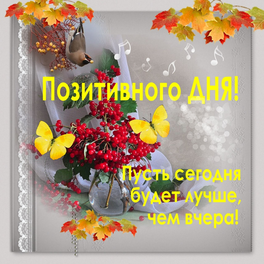 Поздравлением, картинки доброго дня и наилучшие пожелания