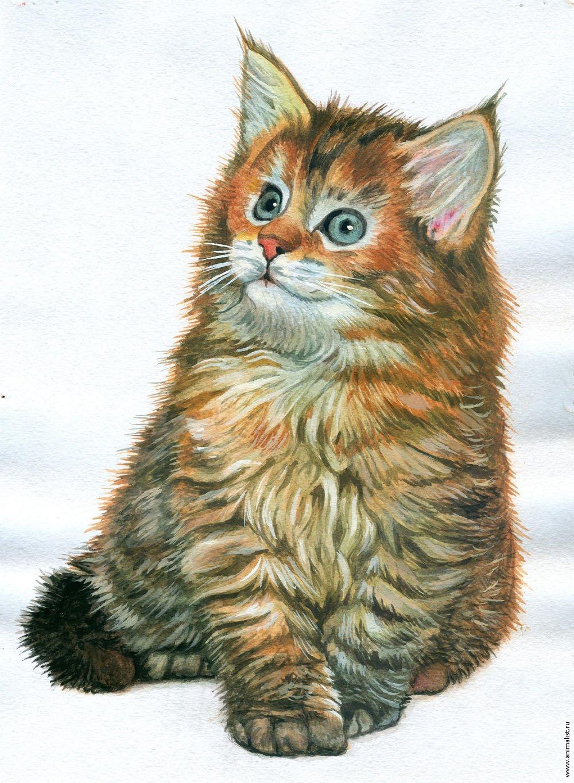 Картинка с котом нарисованным