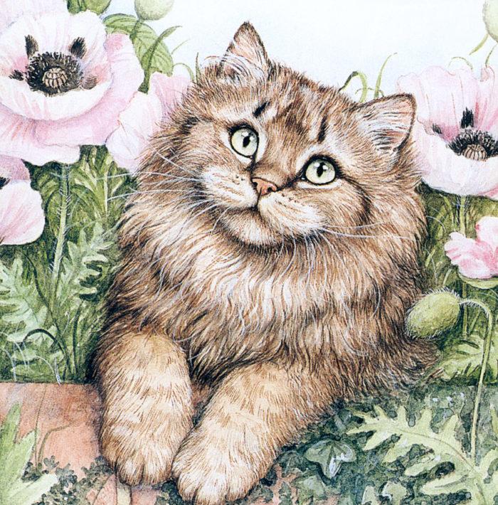 выбора изображение котов картинки четырёх лет владислав