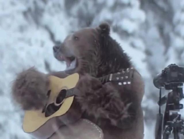 Днем рождения, медведь поет смешные картинки