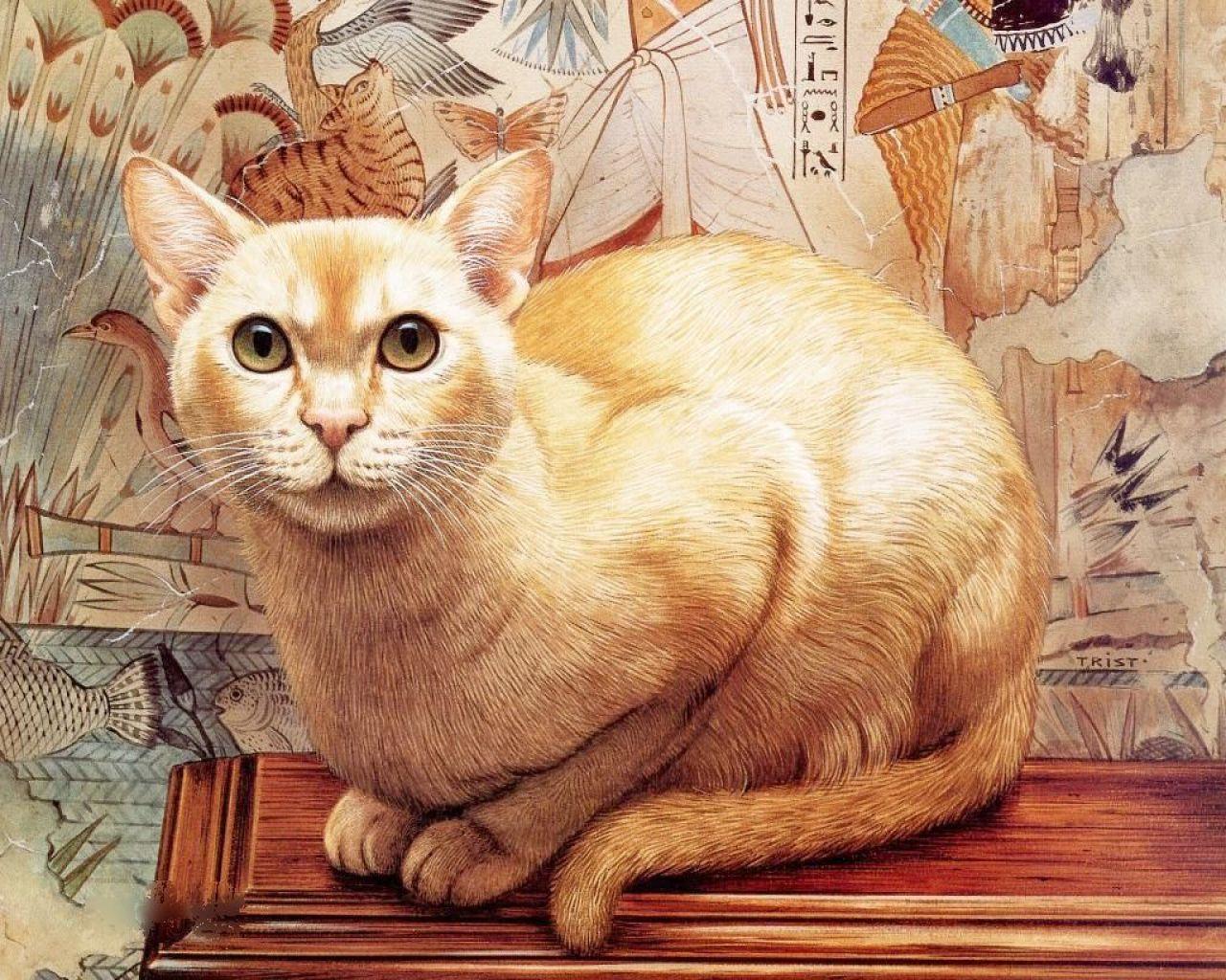 изображение котов картинки них стало возможно