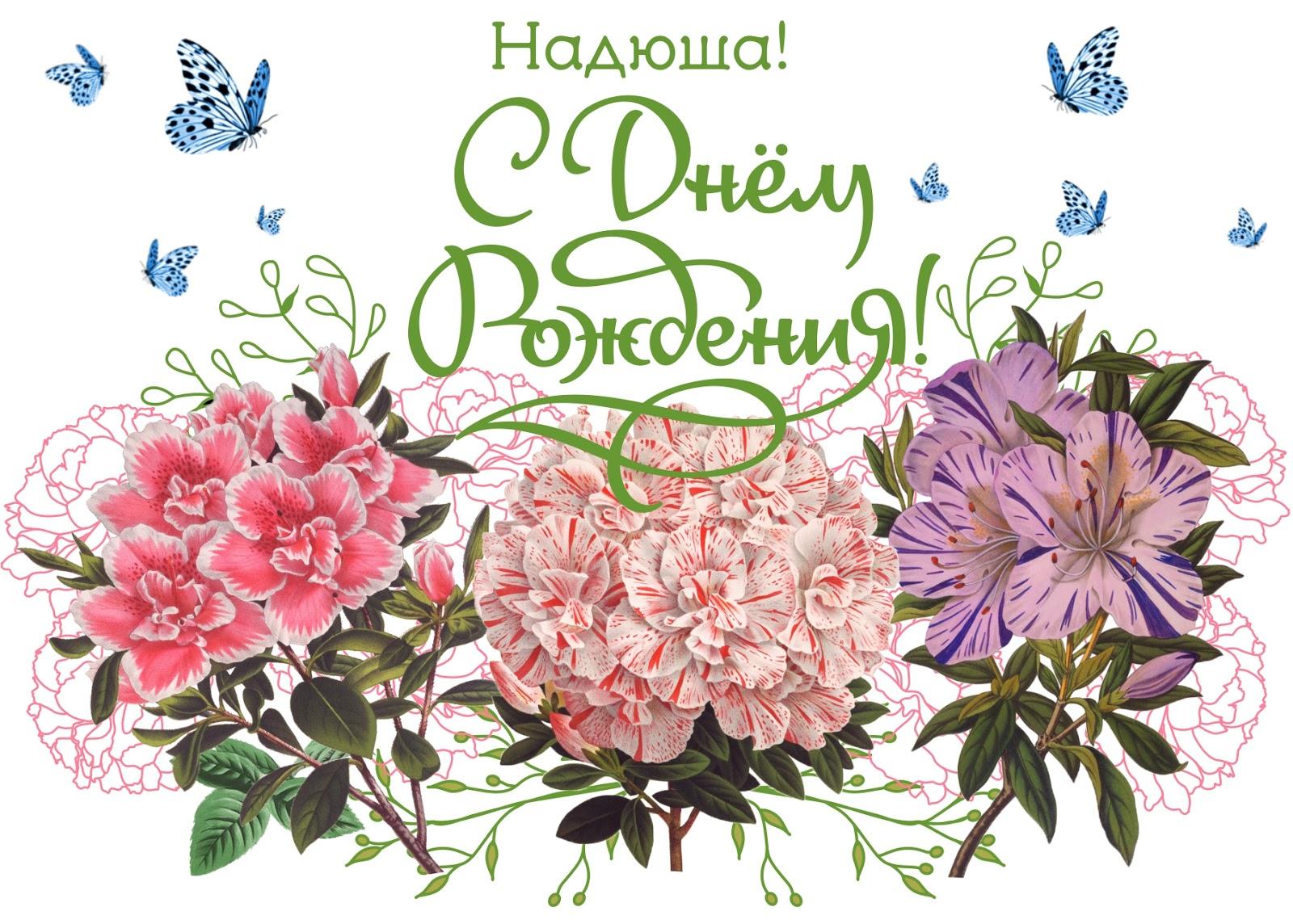 Картинка с днем рождения надежда михайловна, маленькие картинки красивые
