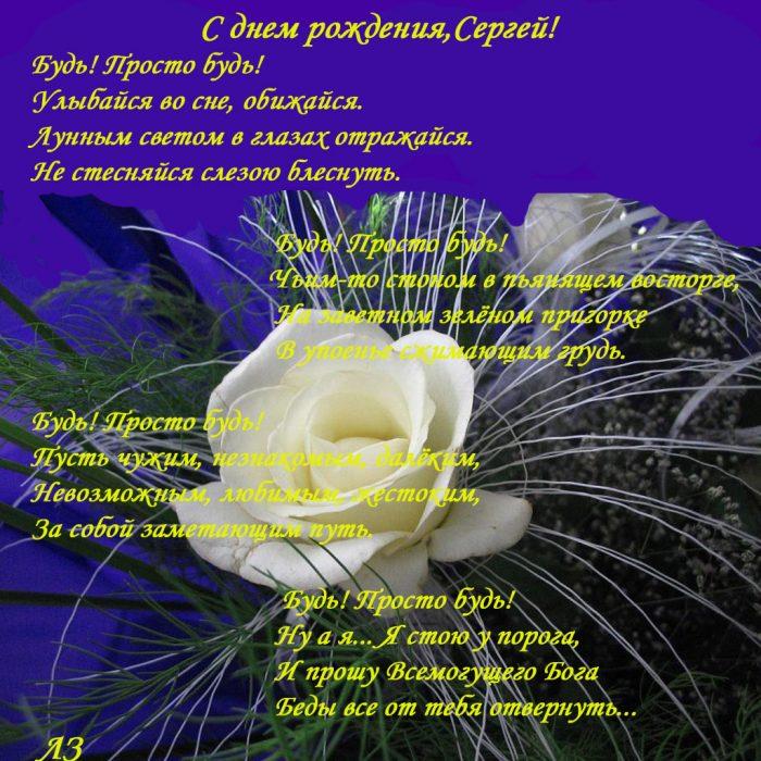 Поздравления с днем рождения сергею другу