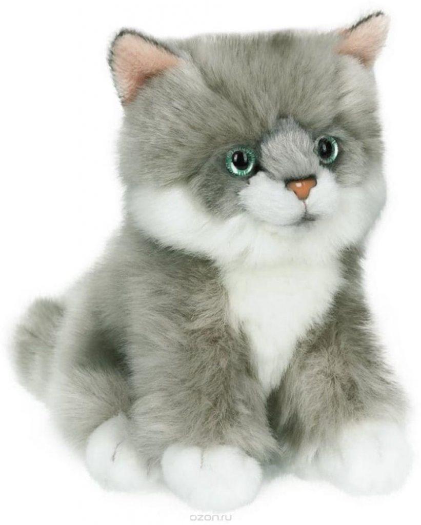 даже картинки игрушка котик без фона только сейчас