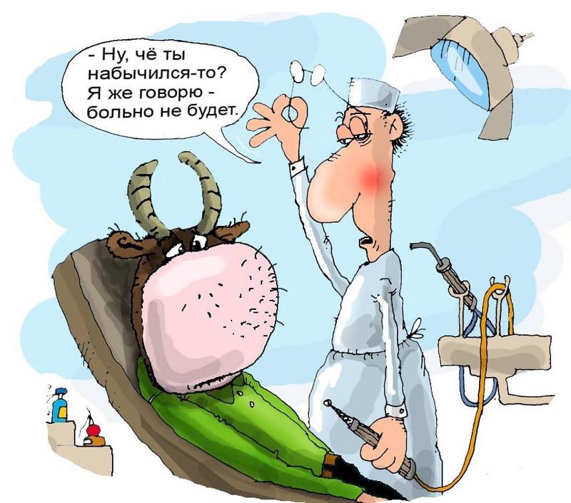 Для, приколы о стоматологах в картинках