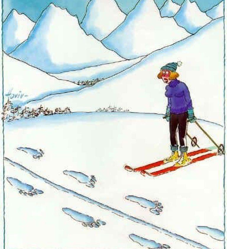 Картинки днем, картинки смешные лыжники