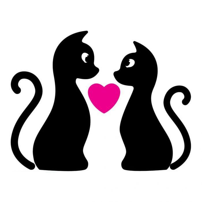 Влюбленные коты - bigmir)net   700x700