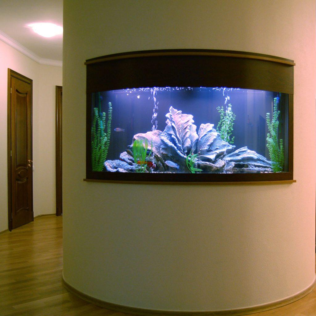 большие домашние аквариумы фото нужно