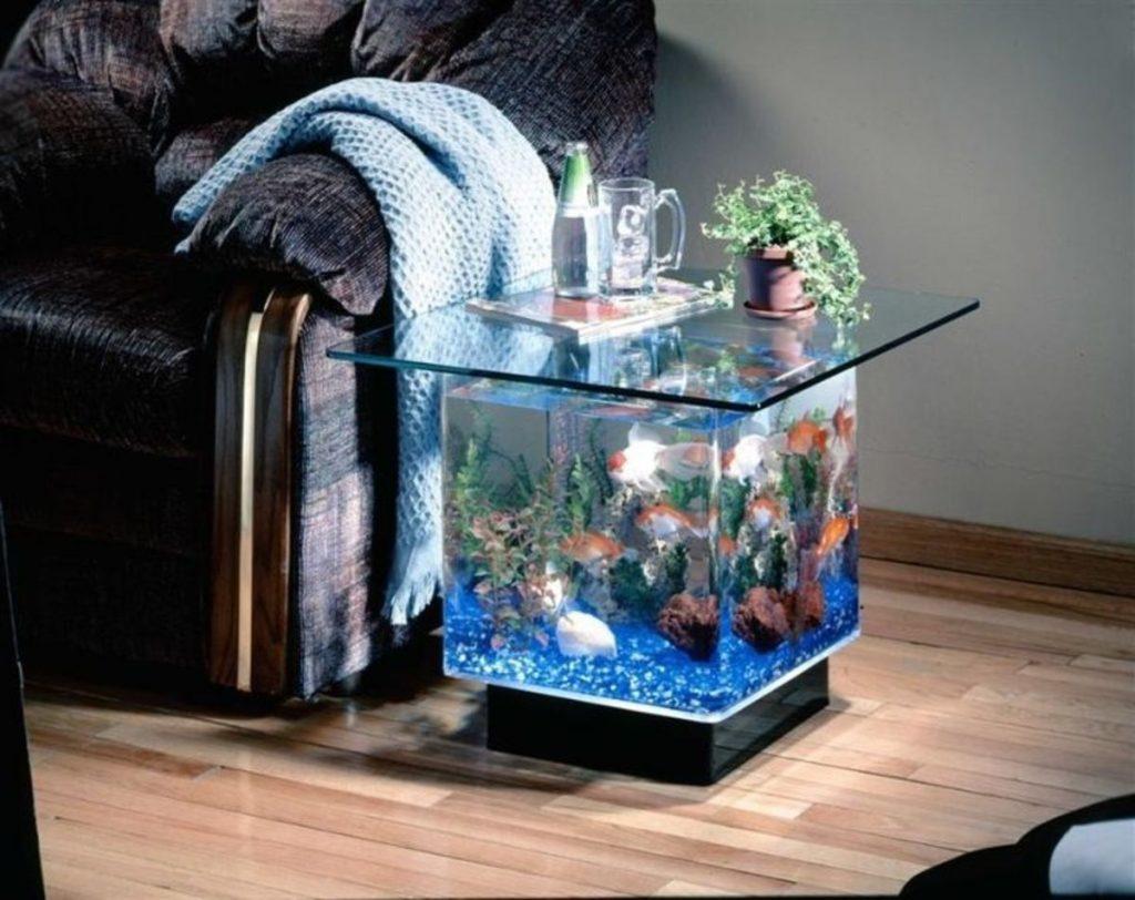растут самого фото оригинальных аквариумов одной них