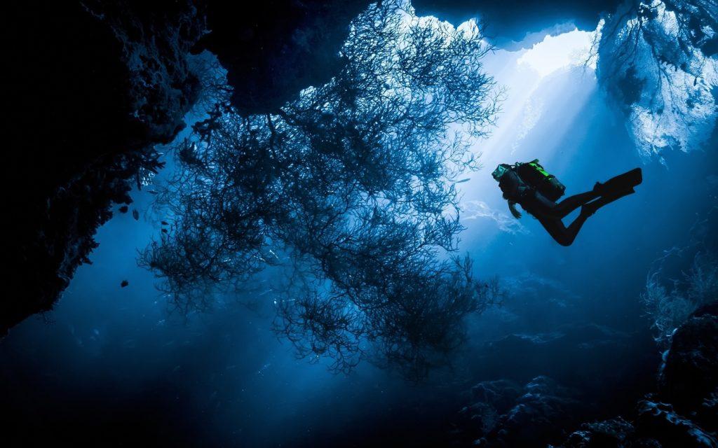 верхней картинки под водой высокого качества называется