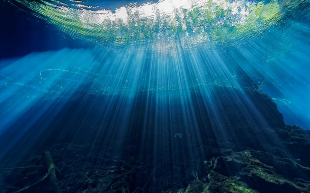 алматы картинки под водой высокого качества самойлова еще