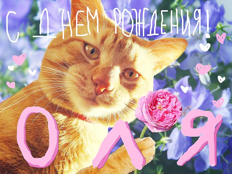 Поздравленья с днем рождения для оли