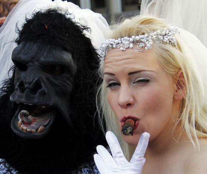 Сердечко, картинки смешные невесты