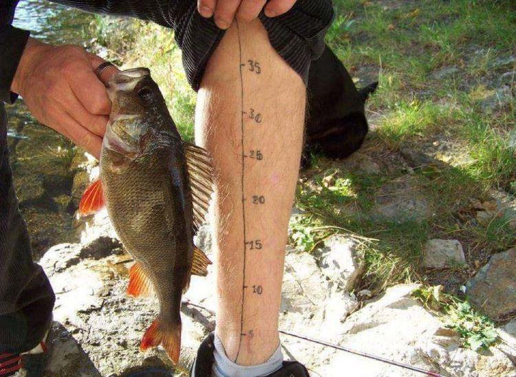Фото приколы про рыбалку