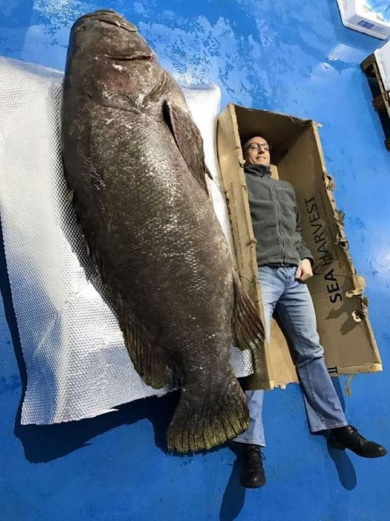 День рыбака картинки на телефон