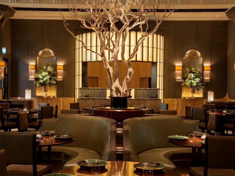 лучшие идеи дизайна ресторанов фото интересные