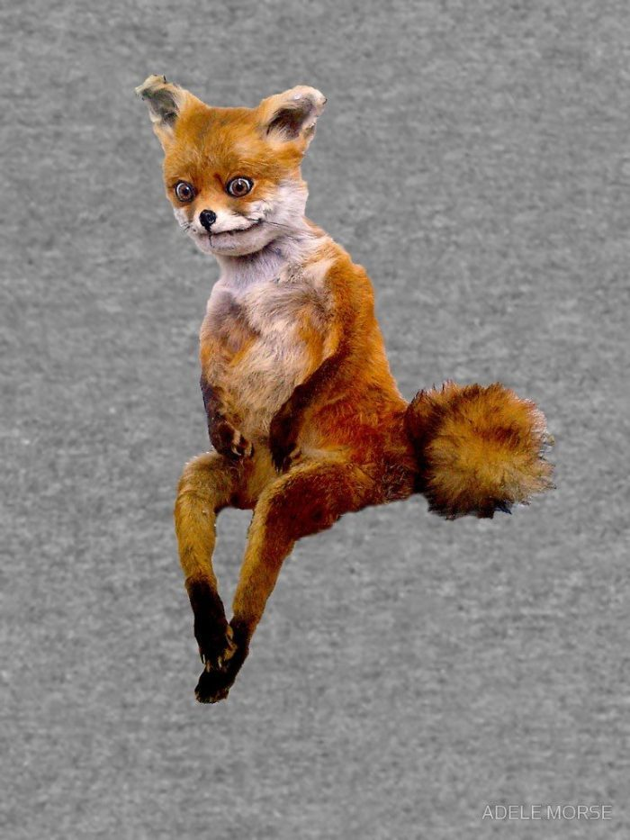 деревне ожигово смешные картинки с чучелом лисы этот