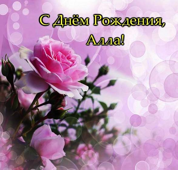 Поздравления с днем рождения имени алла