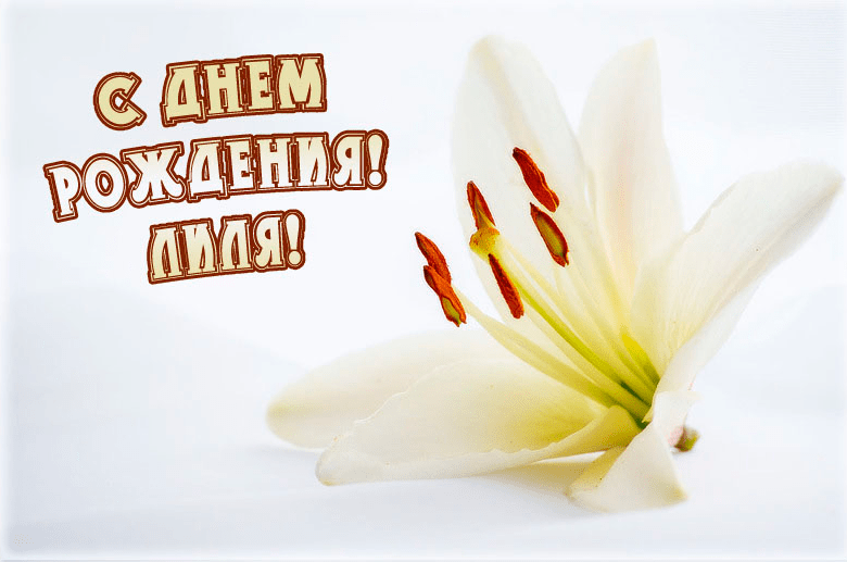 Поздравление лилии с днем рождения в стихах красивые