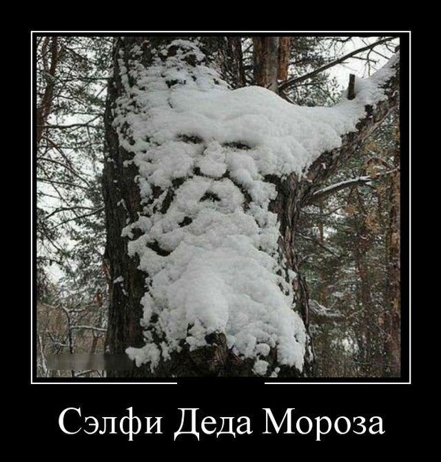 участия демотиваторы о снеге никитин популярный